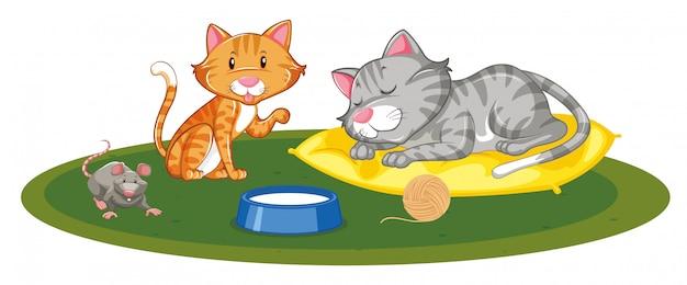 Twee katten en één muis spelen Gratis Vector