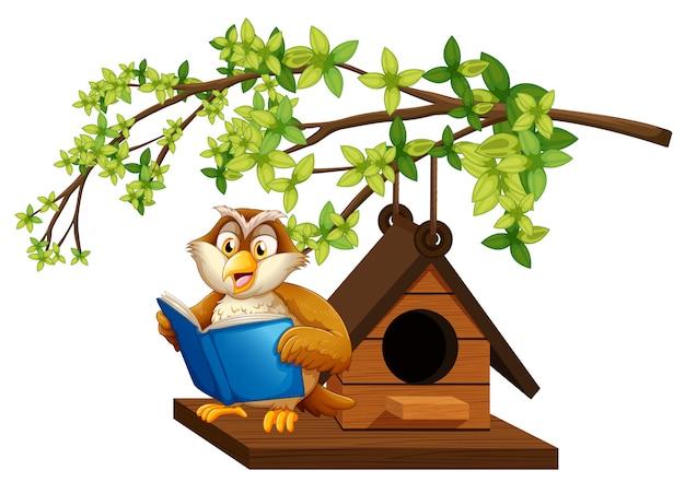Uil leesboek door het vogelhuisje Premium Vector