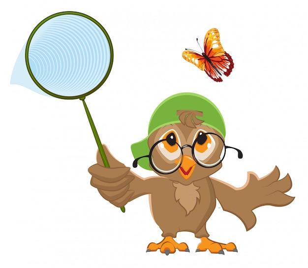 Uil vangt vlinder. vogel- en vlindernet Premium Vector