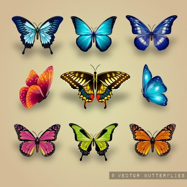 Uitstekende collectie van vlinders Gratis Vector