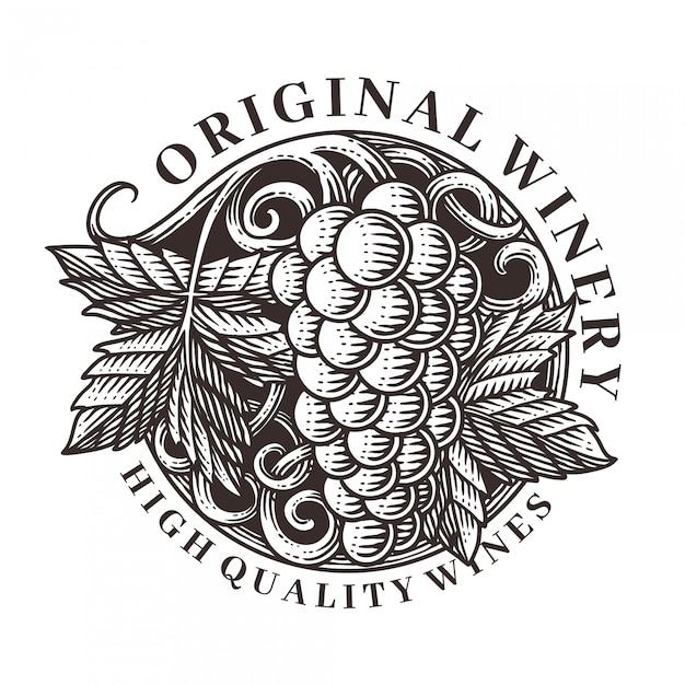 Vector gravure illustratie druiven ornament Premium Vector