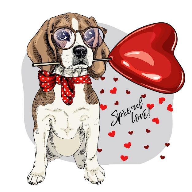 Vector hond. valentine dag wenskaart. Premium Vector