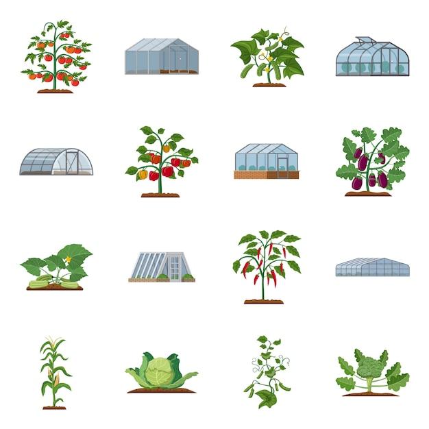 Vector illustratie van broeikasgassen en planten pictogram. set van broeikasgassen en tuin stock symbool voor web. Premium Vector
