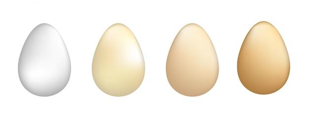 Vector illustratie van eieren set. Premium Vector