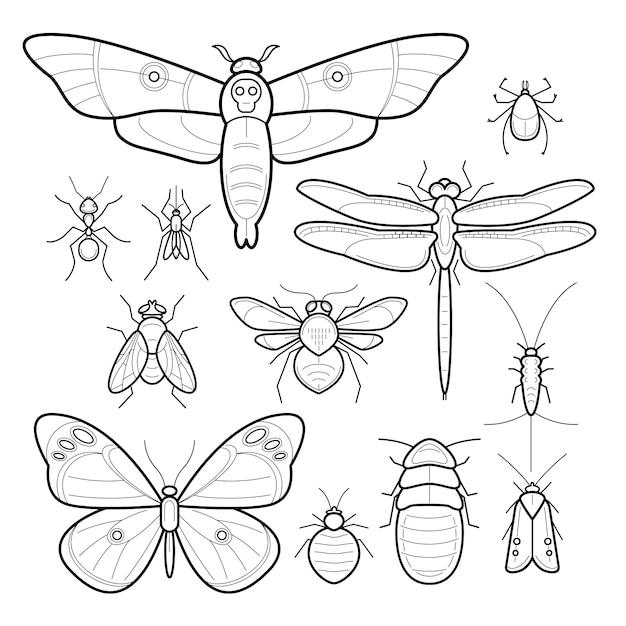 Vector insecten. set. Premium Vector
