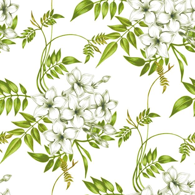 Vector naadloos bloemenpatroon met jasmijnbloemen. Premium Vector