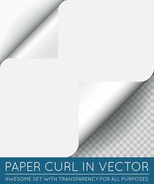 Vector papier paginakrul met schaduw geïsoleerd. Premium Vector