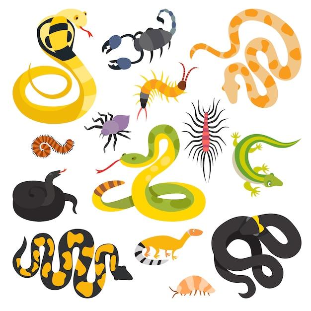Vector platte slangen en andere geïsoleerde collectie van gevaar dieren. Premium Vector