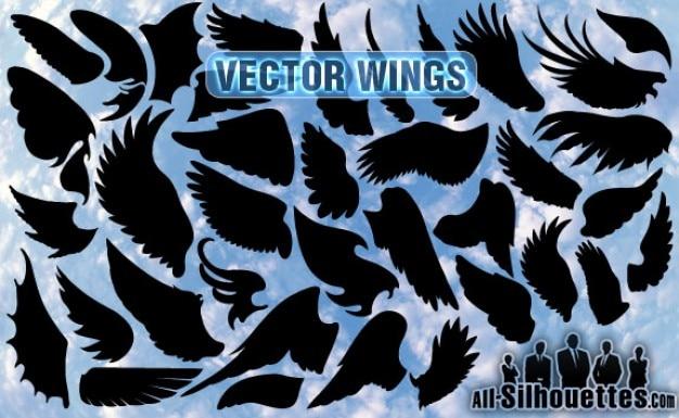 Vector vleugels Gratis Vector