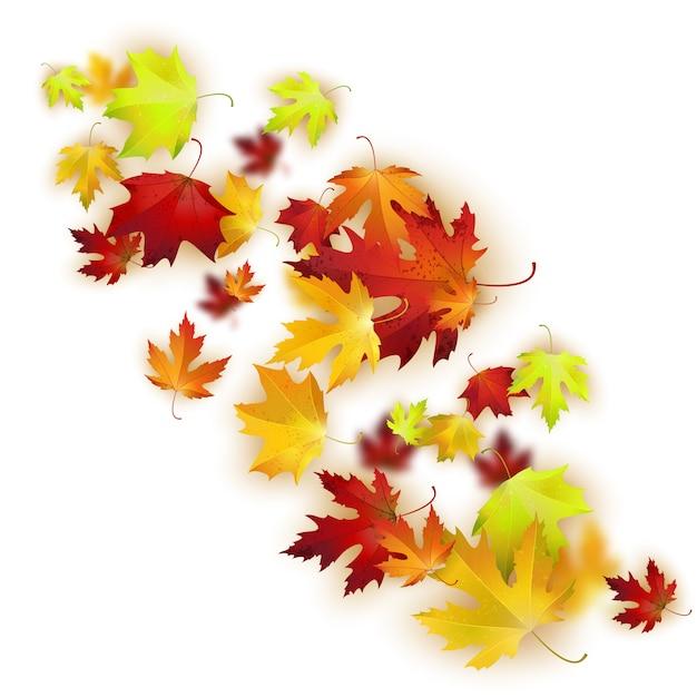 Vectorachtergrond met kleurrijke de herfstbladeren Premium Vector