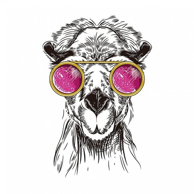 Vectorbeeld van een kameel in roze glazen Premium Vector