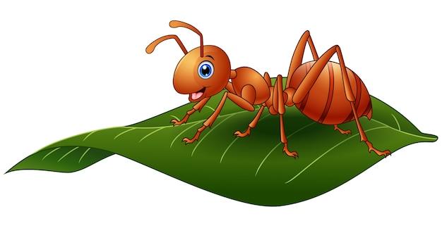 Vectorillustratie van cartoon mier op het blad Premium Vector