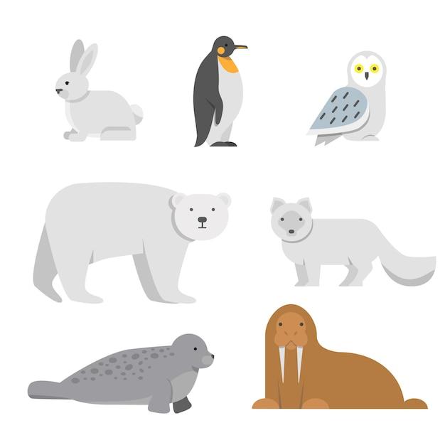 Vectorillustraties van arctische sneeuwdieren Premium Vector