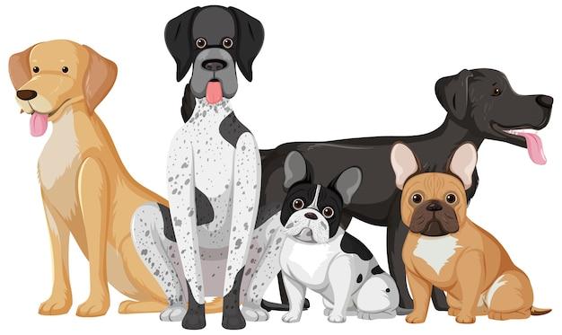 Veel schattige honden in een groep geïsoleerd op een witte achtergrond Premium Vector