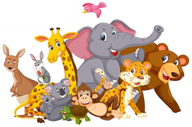 Veel wilde dieren Premium Vector