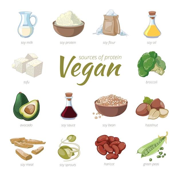 Veganistische eiwitbronnen. plantaardige proteïne clipart in cartoon-stijl. erwten en haricot, hazelnoot en avocado, broccoli en soja Gratis Vector