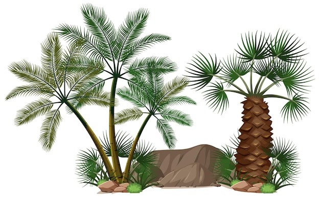 Verdedigende palmbomen met natuurelementen Gratis Vector