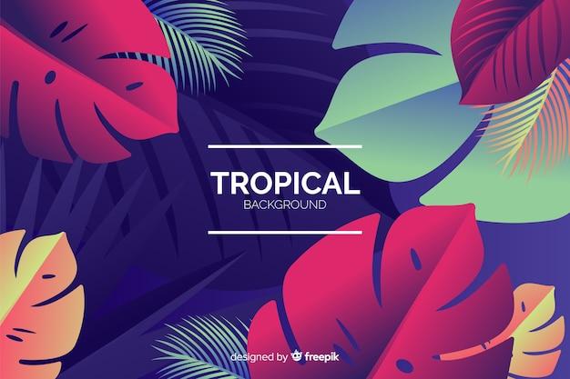 Verloop tropische achtergrond Gratis Vector