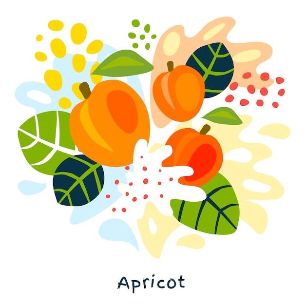 Vers abrikozenvruchtensap plons hand getrokken illustratie Premium Vector