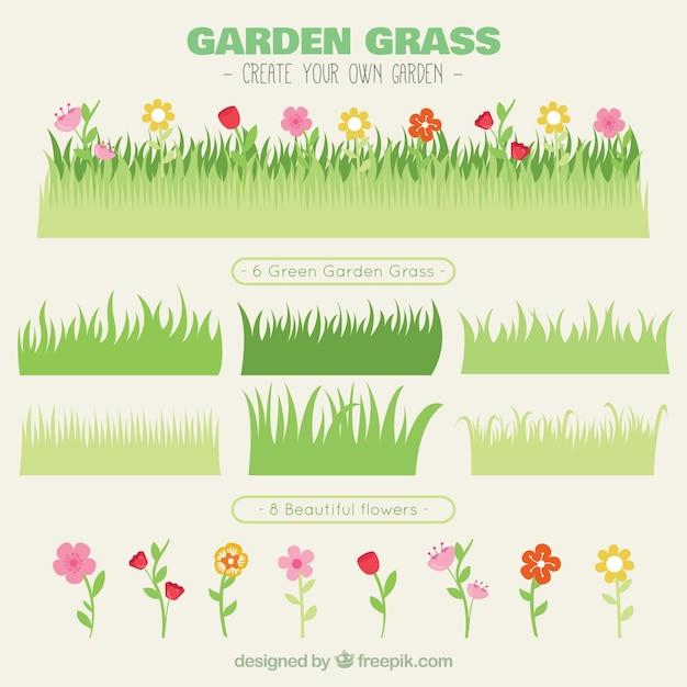 Verscheidenheid van gras met bloemen Premium Vector