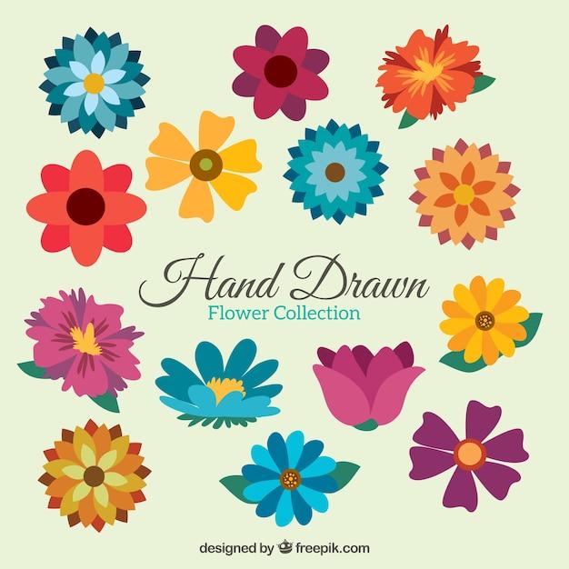 Verscheidenheid van kleurrijke bloemen in vlakke stijl Premium Vector