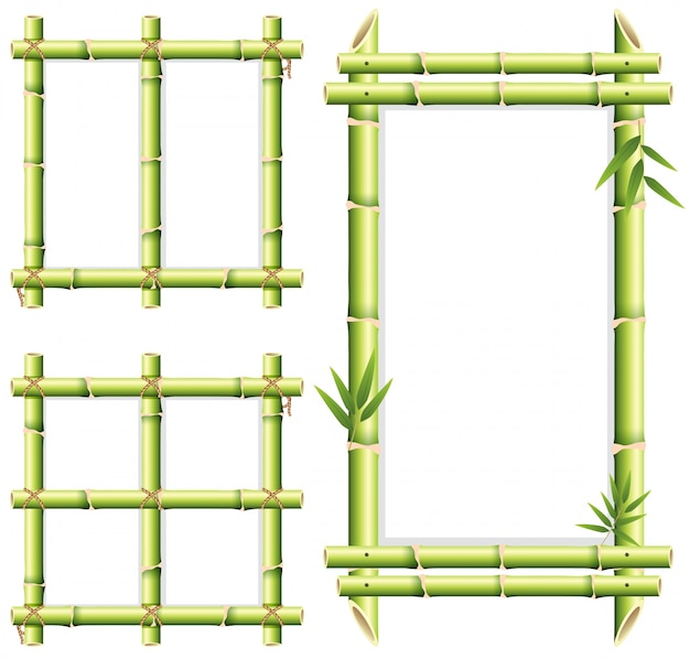 Verschillende frame ontwerpen van bamboe bossen Premium Vector