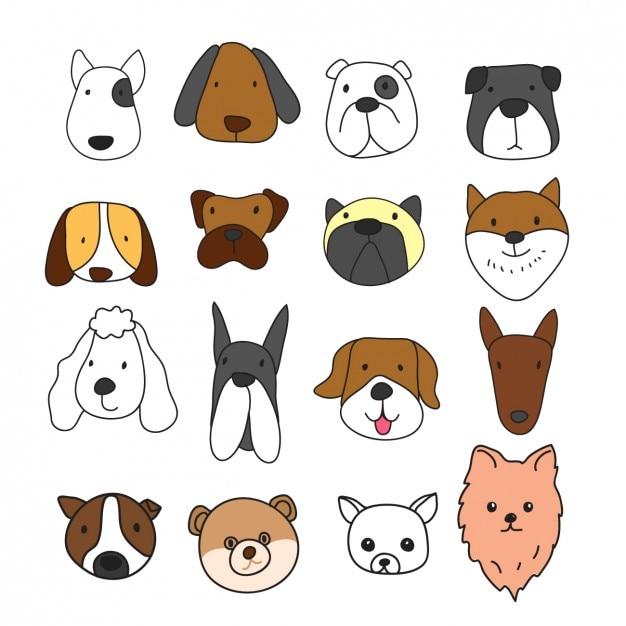 Verschillende hond gezichten collectie Gratis Vector