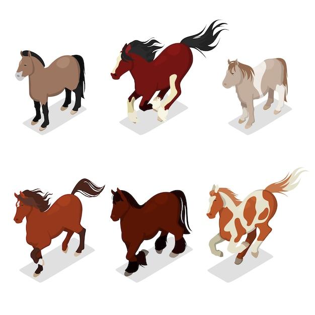 Verschillende rassen paarden set Premium Vector