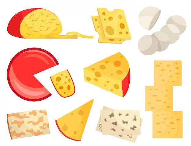 Verschillende soorten kaas. moderne vlakke stijl realistisch Premium Vector