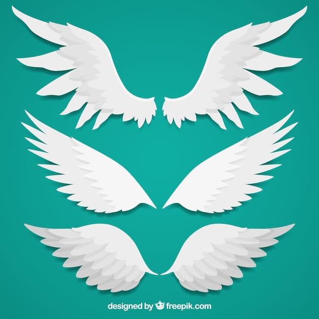 Verschillende vleugels in vlakke vormgeving Gratis Vector