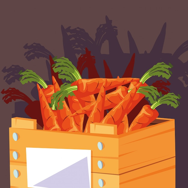 Verse wortelengroenten in houten krat Premium Vector
