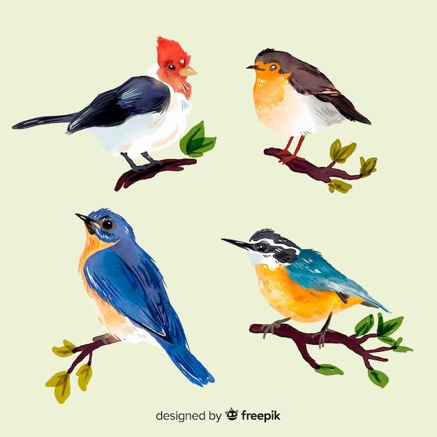 Verzameling van aquarel herfst vogels Gratis Vector