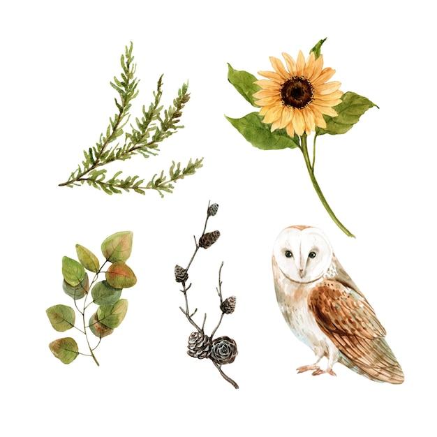Verzameling van geïsoleerde elementen van herfst aquarel Gratis Vector