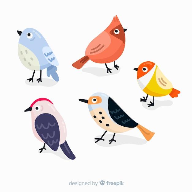 Verzameling van hand getrokken vogels Gratis Vector