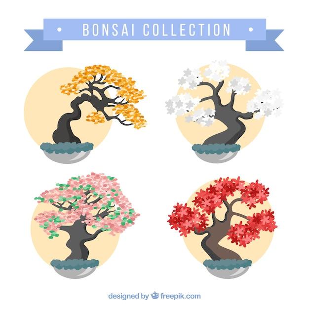 Verzameling van mooie bonsais Gratis Vector