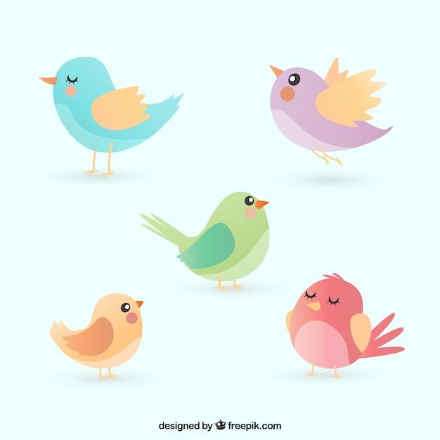 Verzameling van platte vogels Premium Vector