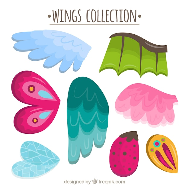 Verzameling van vleugels met verschillende ontwerpen Gratis Vector