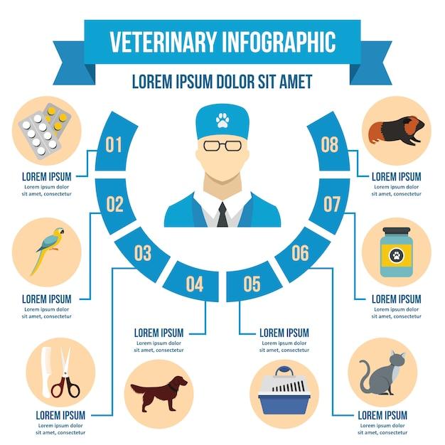 Vet kliniek infographic concept, vlakke stijl Premium Vector