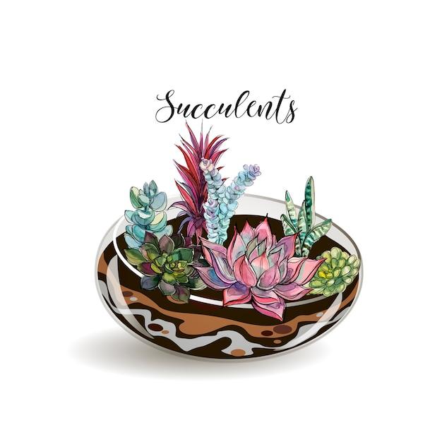 Vetplanten in een decoratief aquarium voor bloemen Premium Vector