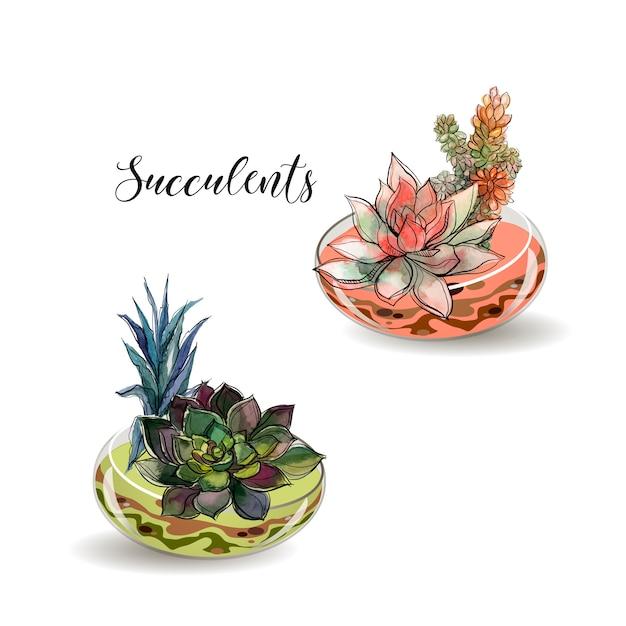Vetplanten in glazen potten Premium Vector