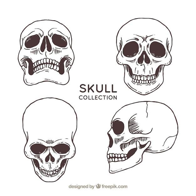 Vier hand getekende schedels Gratis Vector