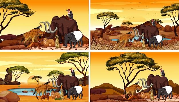 Vier scènes met afrikaanse dieren in het veld Gratis Vector