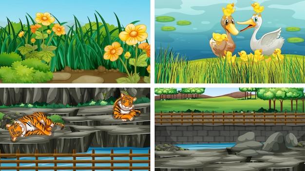 Vier verschillende natuurscènes Gratis Vector
