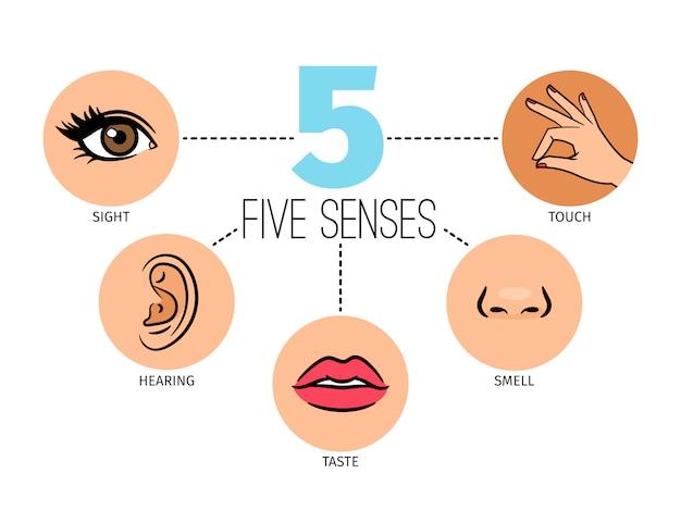 Vijf menselijke gevoelens. Premium Vector