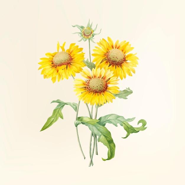 Vintage bloem illustratie Gratis Vector
