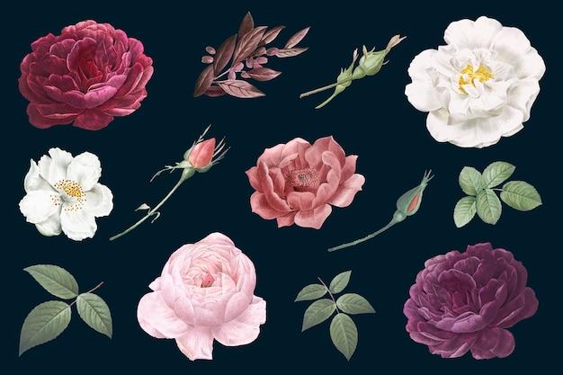 Vintage bloemtekeningen Gratis Vector