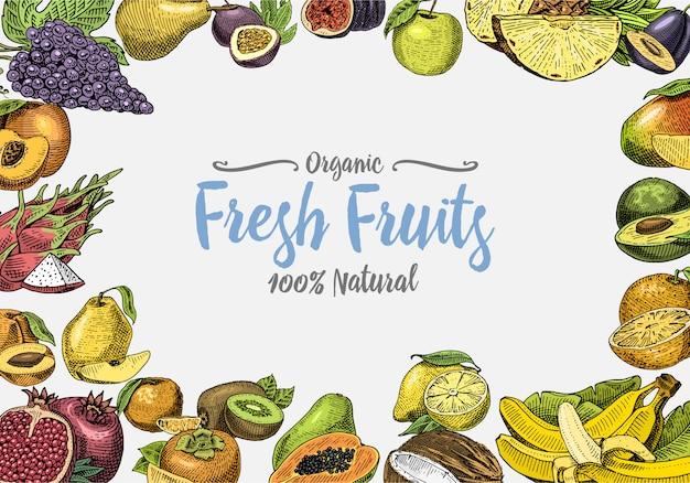 Vintage, hand getrokken vers fruit achtergrond, zomerplanten, vegetarische en biologische citrus en andere, gegraveerd. ananas, citroen, papaja, pitaya, maracuya en bananen. Premium Vector