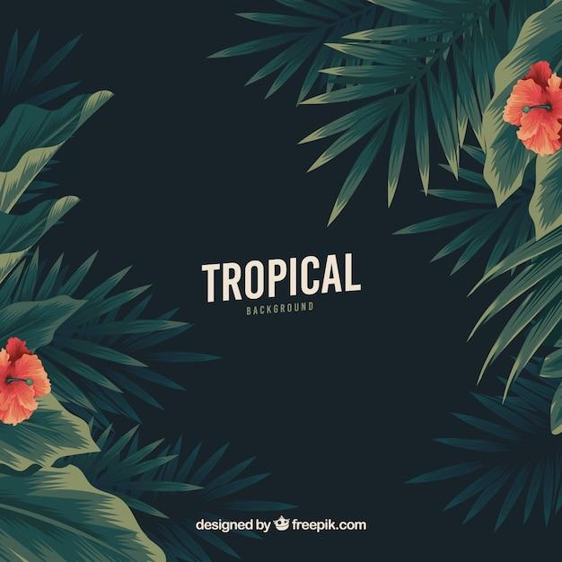 Vintage tropische achtergrond met platte ontwerp Gratis Vector