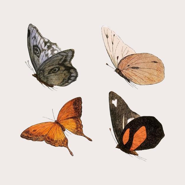 Vintage vlinder illustraties set Gratis Vector