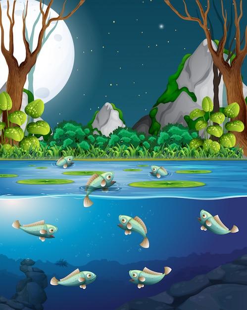 Vissen in rivier bij nachtscène Premium Vector